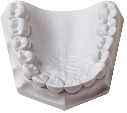 orthodontic_plaster-λευκό